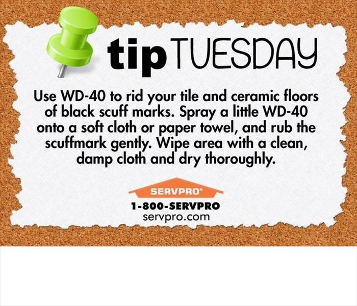 SERVPRO Tip of the Day!