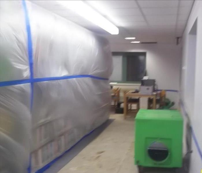 Mold Remediation in a Government Building