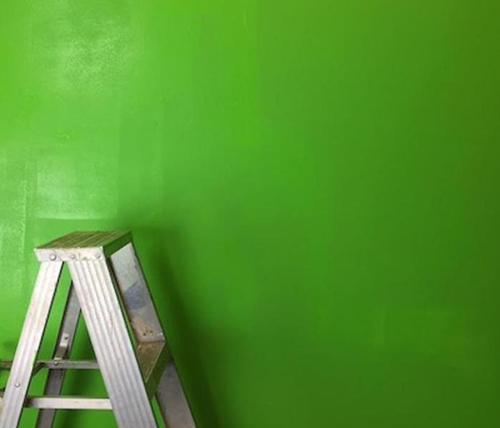 Cleaning Cleaning Your Walls to Achieve Perfect Paint | SERVPRO® of Western Dutchess County