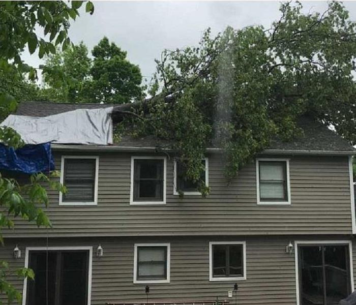 A large branch of a tree laying on a damaged roof after a storm