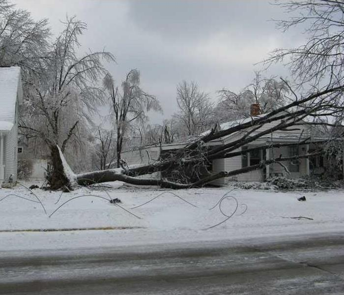 A large, fallen tree laying on the roof of a home after a winter storm