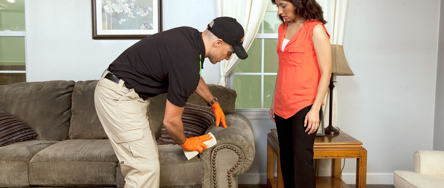 Beacon, NY carpet upholstery cleaning